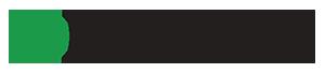 small delsys logo